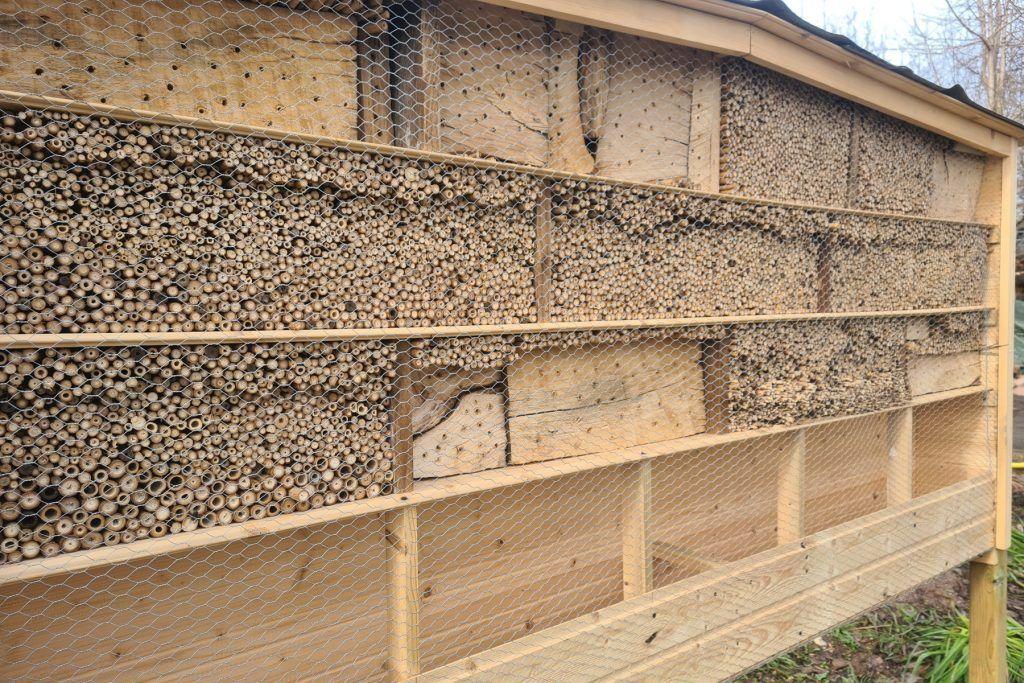 Unsere große Brutstätte für Wildbienen und Co.