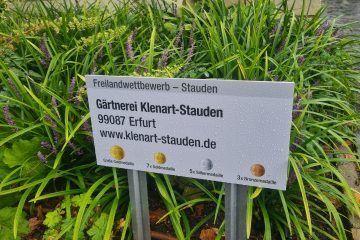 Medaillen für KLENART STAUDEN auf der BUGA Erfurt 2021