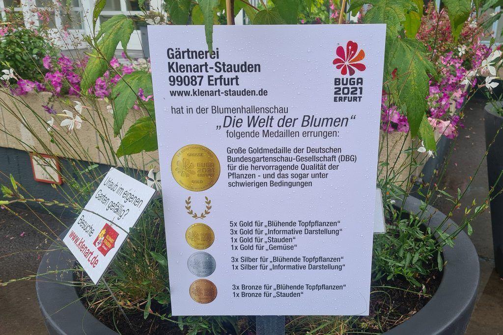 BUGA Erfurt 2021 - Medaillen Hallenschau 16 KLENART STAUDEN