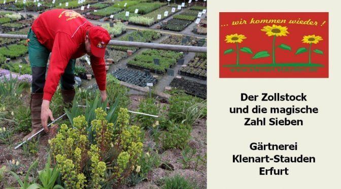 Gartentipps - unser monatlicher Newsletter