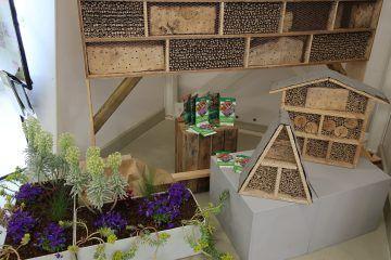 Ausstellungsbeitrag zum Thema Insektenfreundlichkeit