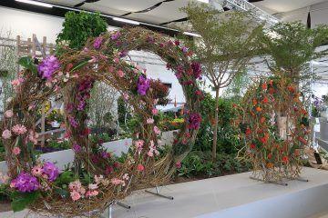 Floristik in der BUGA-Hallenschau