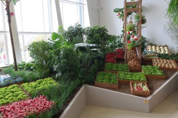 Gemüse in der BUGA-Hallenschau