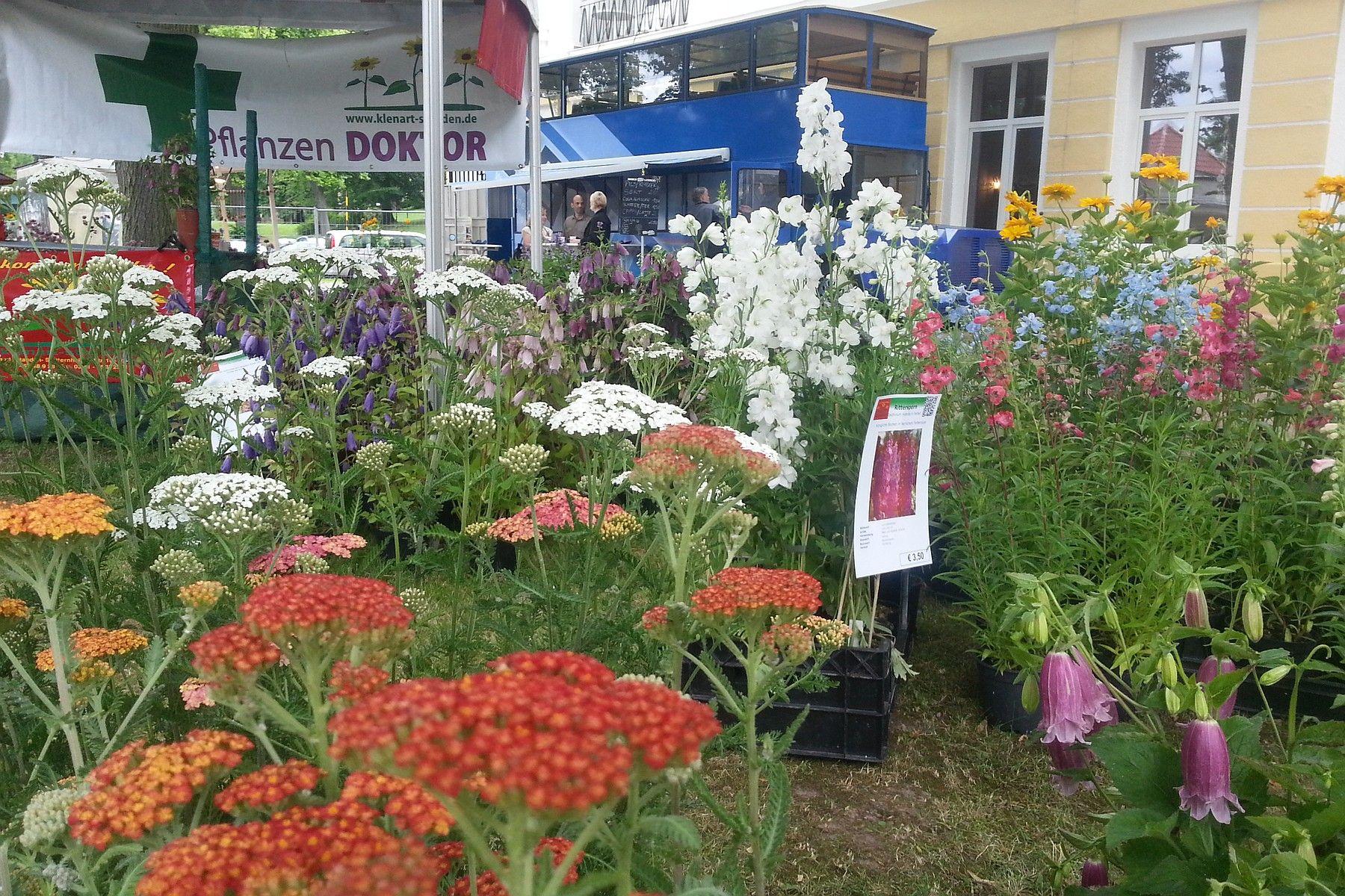 Messe-Markt-Pflanzenboerse